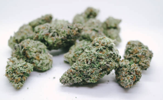 Статус марихуаны во флориде лампы освещение конопли